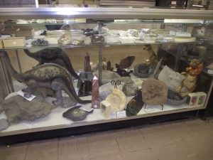 Rare Collectibles Commerce Township MI - Dixieland Flea Market - Dig-Sum-Dinos-Fossils